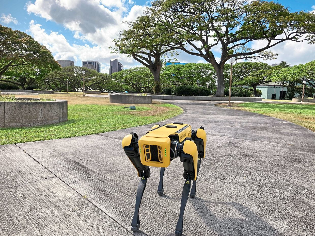 But privacy watchdogs – the human kind – warn that police are secretly rushing to buy the robots without setting safeguards against aggressive, invasive or dehumanising uses. — AP