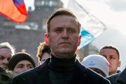 Russia's Navalny nominated for EU rights prize