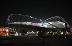 Soccer-AFC confirms Doha as venue for Australia, Iraq qualifiers