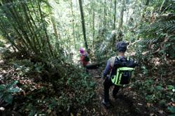 Forest reserves, eco-parks to reopen in Selangor from Saturday (Oct 2)
