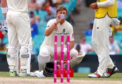 Cricket-Australia 'flexible and practical' for Ashes - minister