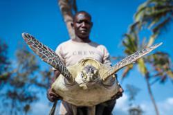This accountant in Kenya has dedicated himself to rescuing sea turtles