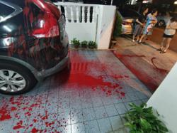 MCA complaints bureau deputy chief's family house splashed with red paint