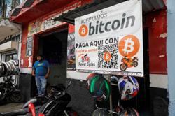 El Salvador to use bitcoin gains to fund veterinary hospital, president says