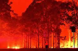 Lawsuit against Australia over climate risk in bonds to proceed