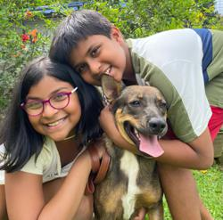 My Pet Story: Dasher and the grandkids