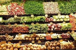 Vietnam actively seeking to expand export markets for farm produce