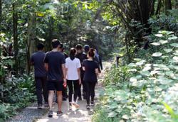 MBPJ: Bukit Gasing hiking trail reopens Oct 16, only fully vaccinated allowed