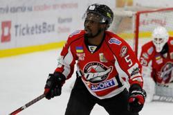Ice hockey-Ice hockey federation seeks reform after racist incident, president says