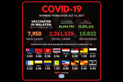 Covid-19: 7,950 new cases bring total to 2,361,529