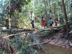 Water problem: Sabahans want an end to constant supply disruptions – while some just want water supply, period
