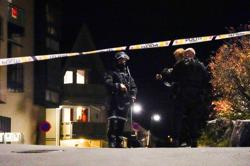 Norway bow-and-arrow attack likely linked to mental illness - police