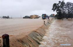 Disasters in Vietnam cause economic losses of 1-1.5 per cent of GDP annually