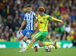 Soccer-Norwich remain winless in the league after goalless draw with Brighton