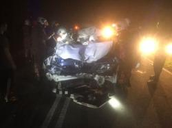 Driver killed, three family members injured after car crashes into elephant in Johor