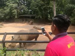 More than RM800,000 in ticket sales at Melaka Zoo since Oct 1