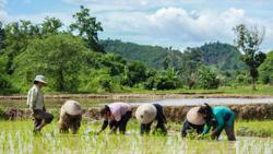 ADB says investment in agriculture and tourism in Laos is important for the future of the country