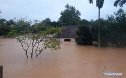 Heavy rains and floods leave three dead in Vietnam