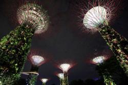 Global power cost surge wrecks Singapore's electricity market