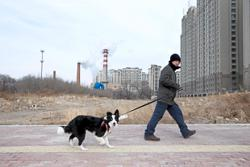Brrrrr... it's gonna be a cold one in Harbin