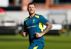 Cricket-Australia's Pattinson announces international retirement