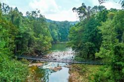 All national parks in Johor to reopen on Nov 1