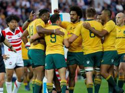 Rugby-Wallabies wary of Brave Blossoms ambush in Oita