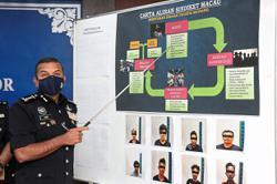 Johor police bust Macau scam ring