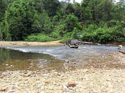 Johor's national parks to reopen on Nov 1