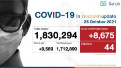 Thailand sees 8,675 new Covid cases, 44 deaths