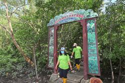 Group plants 200 mangrove saplings to mark Environment Day