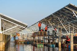 White paper lists China's success in tackling climate change